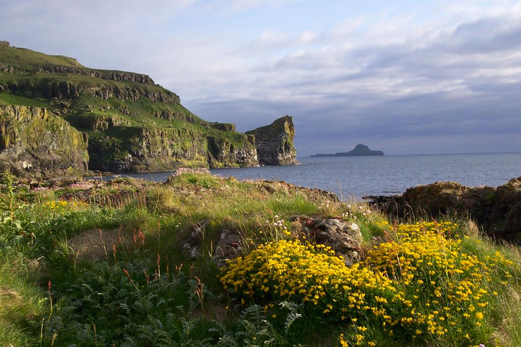 Lunga Treshnish Isles Inner Hebrides Scotland
