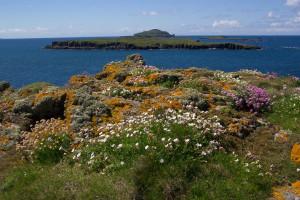 Cairn na Burg Mor Fladda Lunga Treshnish