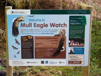 Mull Sea Eagle Hide Isle of Mull Mull Eagle Watch Forestry  commission and RSPB