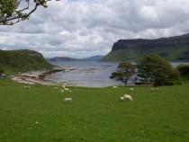 Inchkenneth Isle Isle of Mull Gribun Cliffs