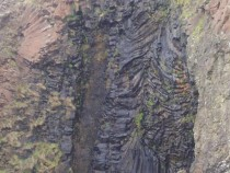 Mc Cullochs Fossil Tree burg Ardmeanach Isle of Mull