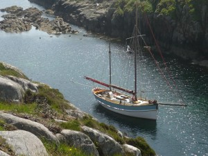 boat-trips-and-tours,Alternative Boat Hire, Iona,Staffa and Mull
