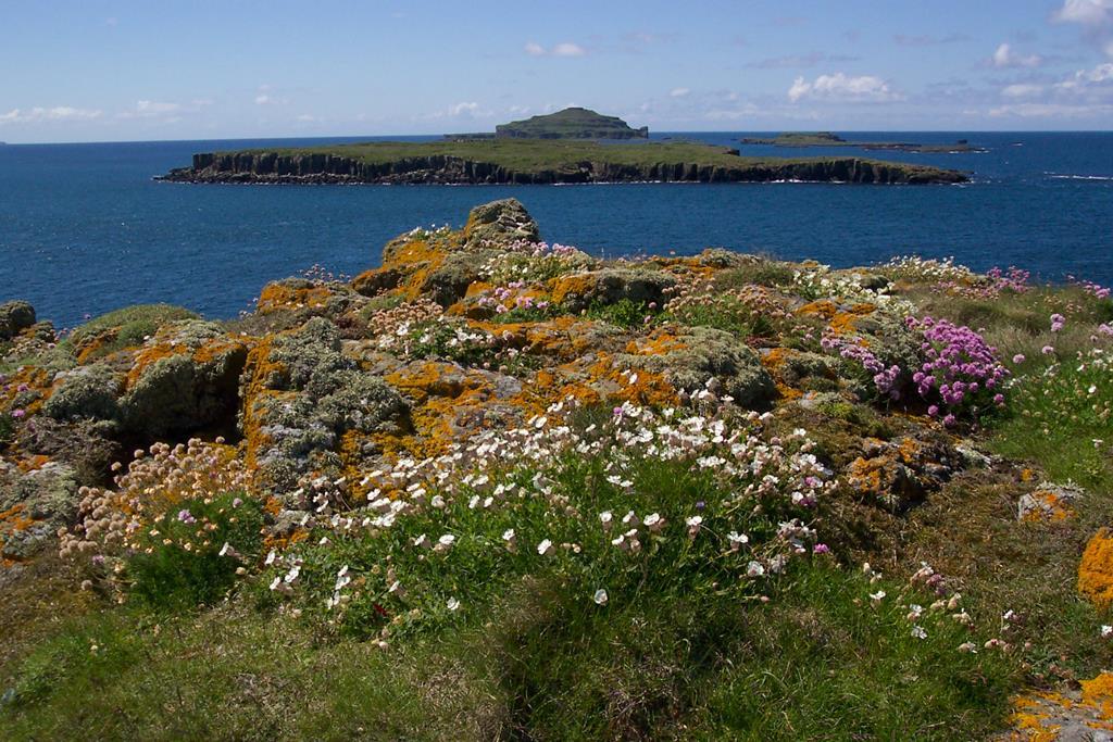 Treshnish Isles,Carn na Burg,Fladda,Lunga,Dutchmans Cap,Inner Hebrides