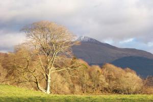 Ben Cruachan Argyll Scotland