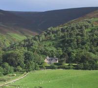 Culgower view
