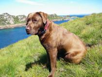 Meg on Tor Mor Bull Hole Fionnphort Isle of Mull