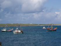 Fishing Boats Fionnphort Bay Mull
