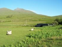 Derryguaig Ben More Isle of Mull