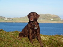 Megan Fionnphort Isle of Mull