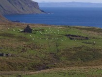 Shiaba ruined township Malcoms Point Ross of Mull