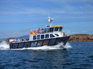 boat-trips-and-tours, Staffatours,Staffa,Mull,Iona,Treshnish Isles,Fingals Cave,wildlife